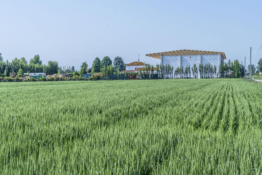 Funghi Valentina, 2017, Bologna, edificio di stoccaggio materie prime a servizio del complesso industriale | BI Engineering